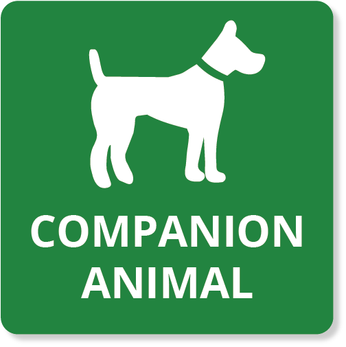 Companion Animals Basic icon