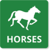 Horses Basic Icon