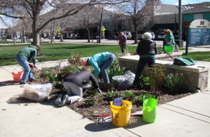 Colorado Master Gardeners maintain a garden.
