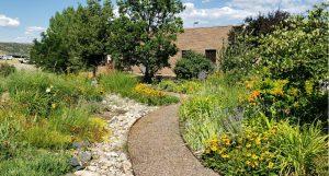 A garden path cuts through a variety of hardy perennials.